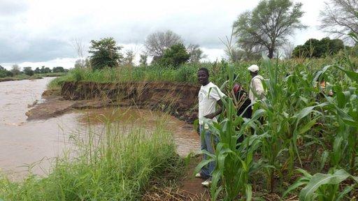 Mae erydiad tîr yn broblem fawr yn Malawi