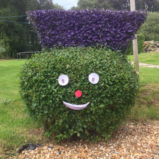 Bush shaped as the Clyde mascot