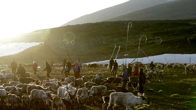 Sami reindeer herders in Sweden