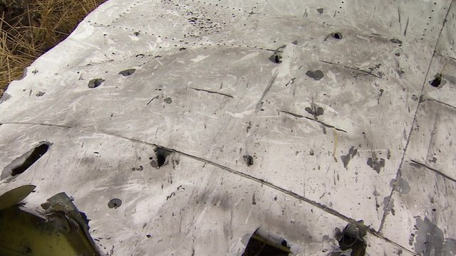 Malaysia Airlines flight MH17 wing