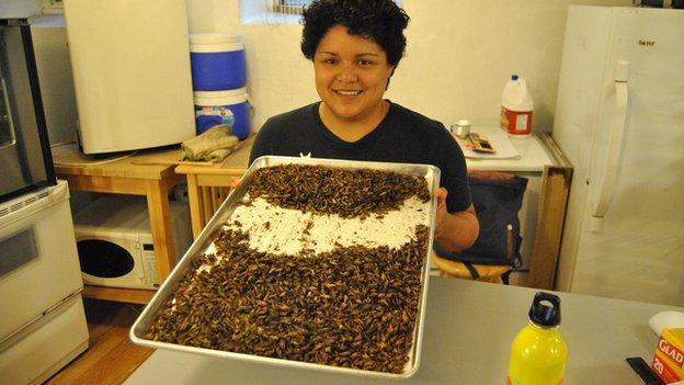 Natalia Martinez holding a tray of crickets