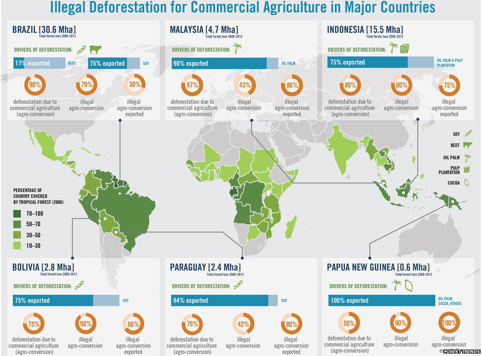 Forest trends global impacts