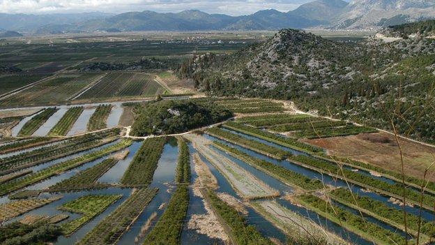 Intensive farming in Croatia - file pic