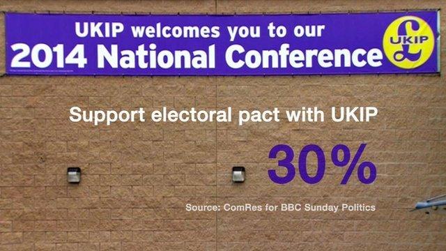 UKIP poll graphic