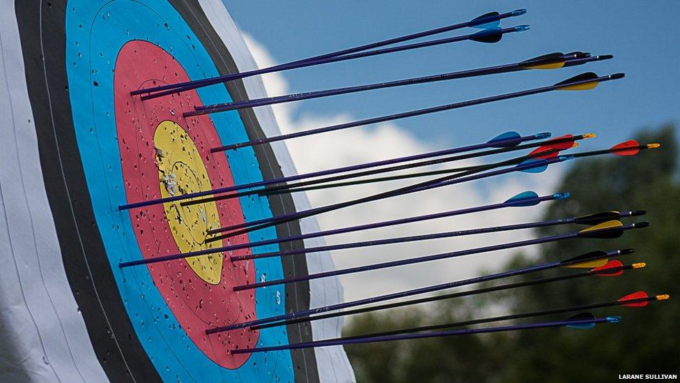 Arrows in a target