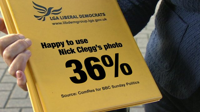 Lib Dem survey graphic