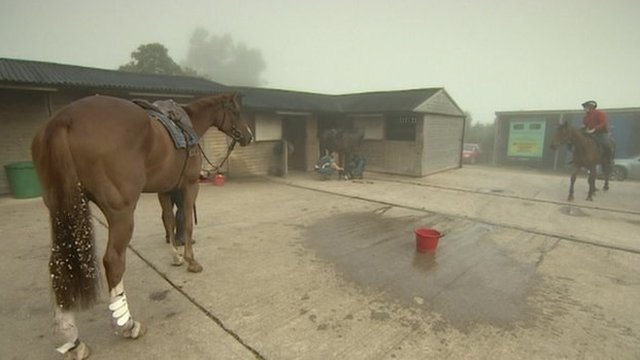 Dr Richard Newland's horses are stabled on the outskirts of Worcester in the village of Claines.