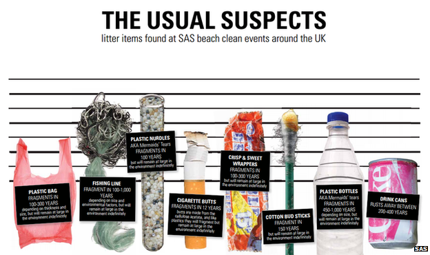 Infographic showing the items of litter usually found on the beach
