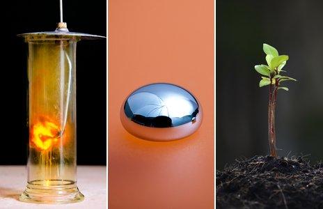 Iron-Chlorine reaction, mercury, green shoot