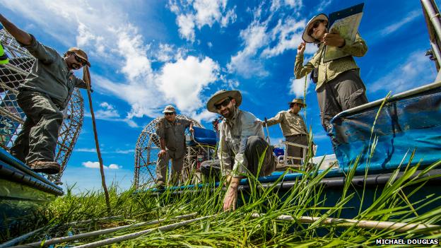 Kakadu rangers and researchers at work in the national park's floodplain - 3 November 2014