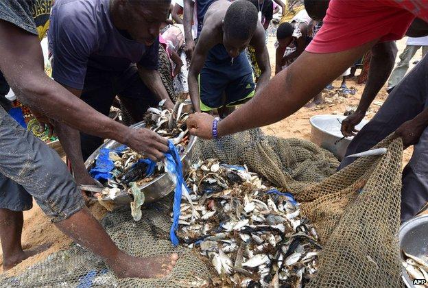 Plastic waste in fishnet