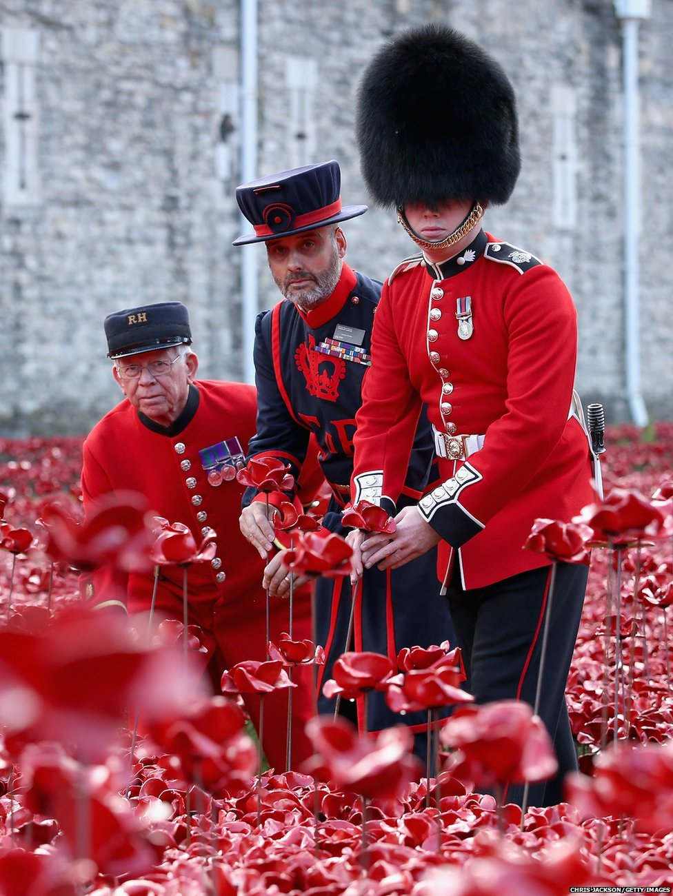 Three generations on the military, Chelsea Pensioner Albert Willis, Yeoman Warder Paul Cunilffe and Captain of the Grenadier Guard Joe Robinson plant poppies