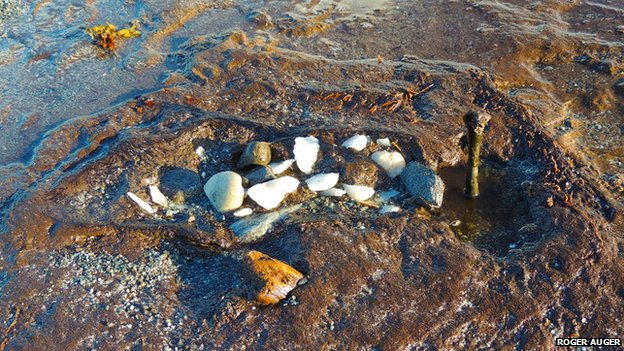 Remains of prehistoric remains found on North Uist beach