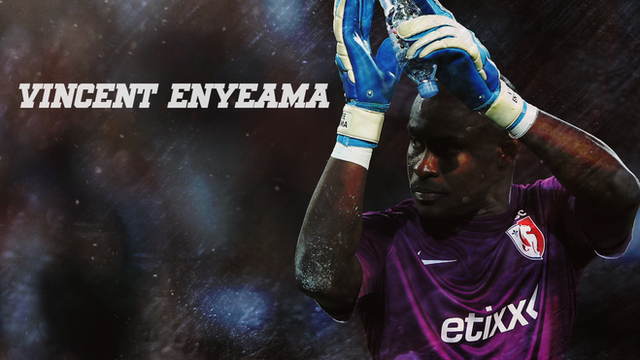 Vincent Enyeama: 2014 BBC African Footballer of the Year nominee
