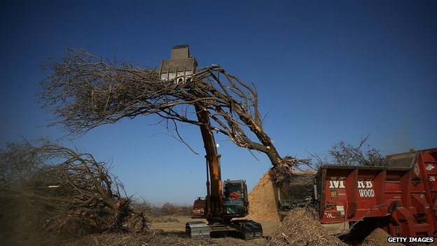 A tractor moves an uprooted almond tree into a shredder at Baker Farming