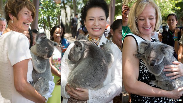 Australian first lady Margie Abbott, China's first lady Peng Liyuan and Canada's first lady Laureen Harper holding koalas at a koala sanctuary in Brisbane on 15 November 2015