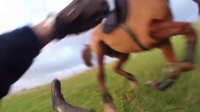 Aggers' horse riding lesson goes wrong