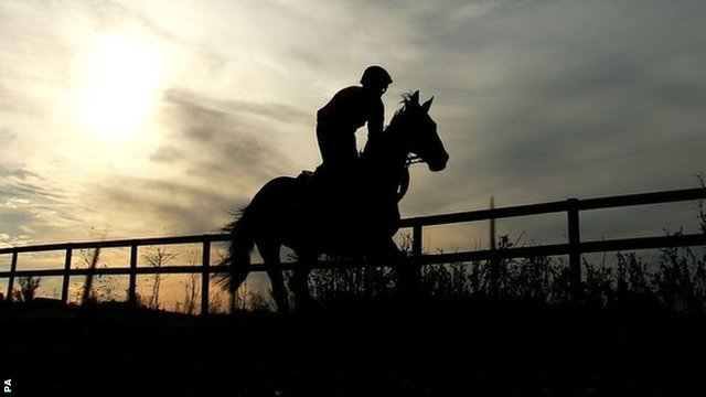 Pineau De Re on the gallops at Linacres Farm, Claines, Worcestershire