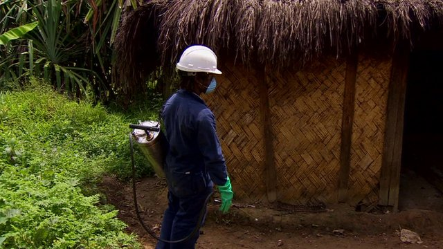 Health worker spraying insecticide