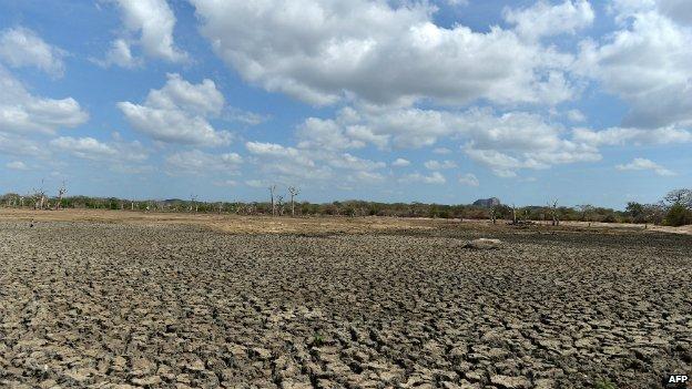 A dried up irrigation reservoir in the Yala national park in Sri Lanka - 11 September 2014