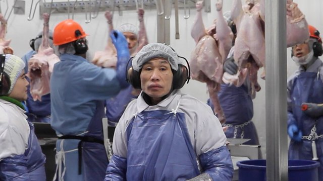 A worker in a turkey factory