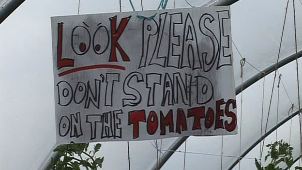 'Do not stand on the tomatoes' sign