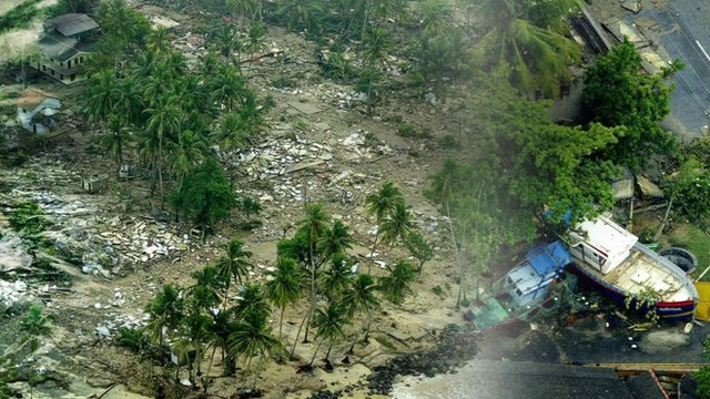 The aftermath of the tsunami
