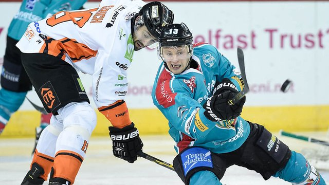 Belfast's Dave Phillips in action against Sheffield Steelers