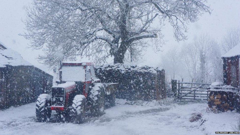 Llangwyryfon: Mae angen cerbyd pedair olwyn mewn tywydd fel hyn / A four wheeled vehicle is ideal in weather like this
