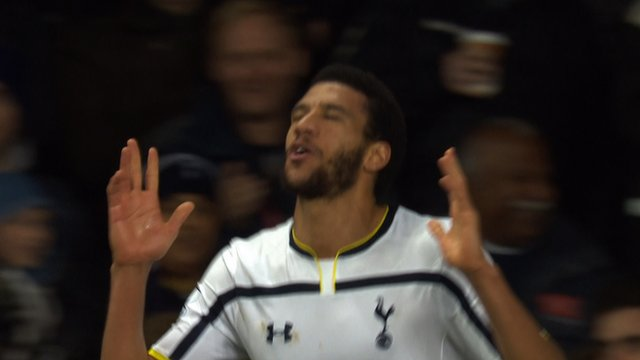 Etienne Capoue in action for Spurs