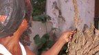 post-image-Jamaica considers marijuana legalisation and production