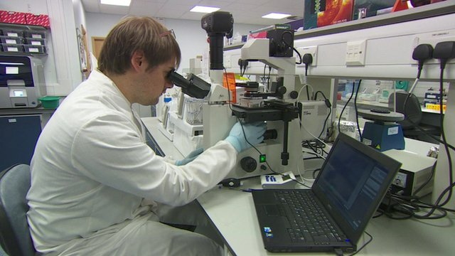 A person in a laboratory looking through a microscope
