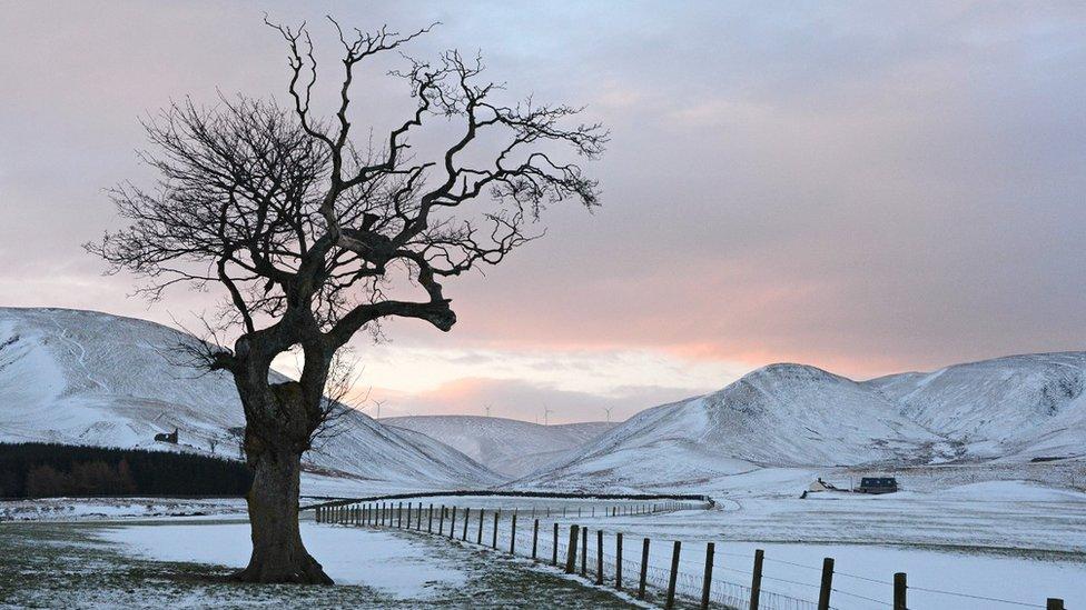 Moorfoot hills in snow
