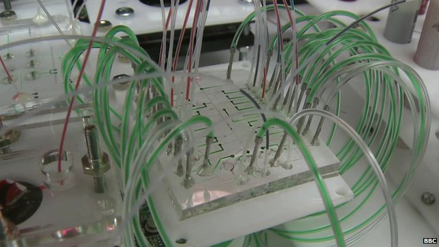 Organs on a chip project at MIT