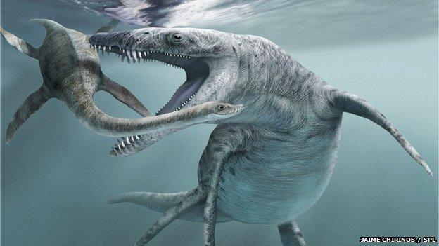 extinct marine reptiles