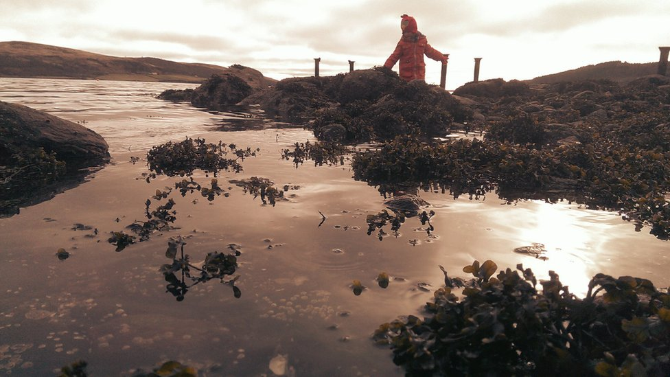 Child with seaweed