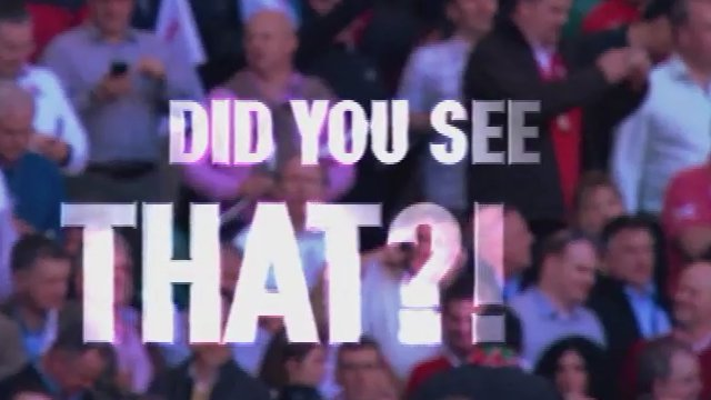Scrum V: Did you see that?!