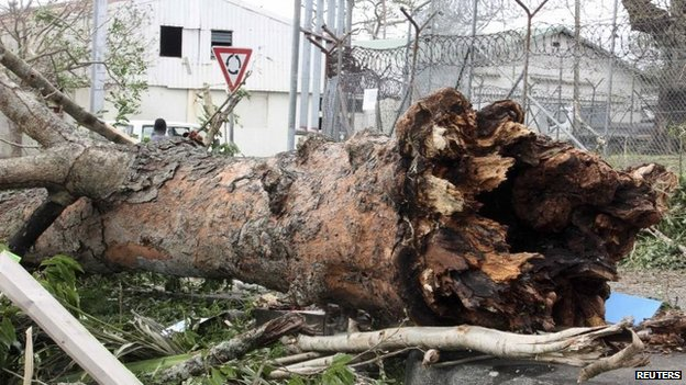 A large tree uprooted by Cyclone Pam lies on a street near a prison in Port Vila, the capital city of the Pacific island nation of Vanuatu, on Sunday