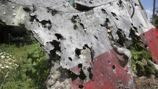 Piece of shrapnel-pierced fuselage of Malaysia Airlines flight MH17 in eastern Ukraine (23 July 2014)