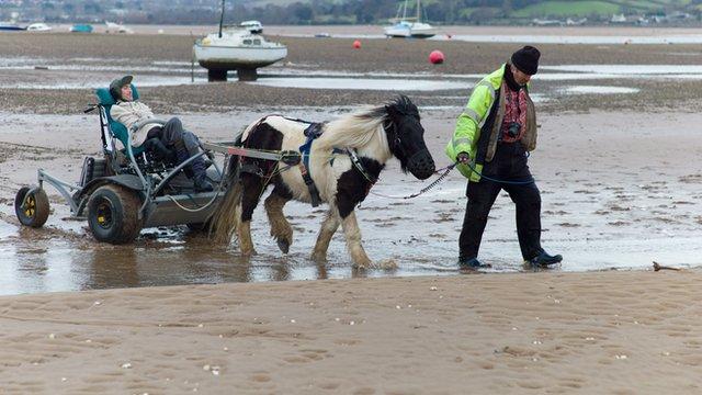 Pony Access