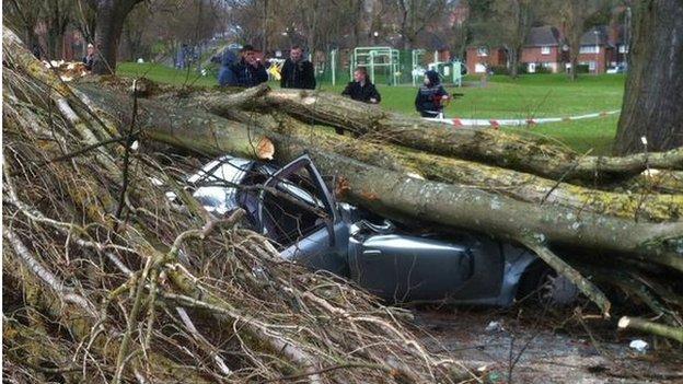 Car crushed by tree in Selly Oak, Birmingham