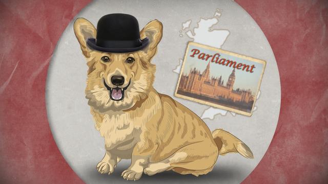 Illustration of Corgi dog in bowler hat
