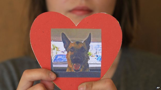 Hermosillo resident Julieta Robles, with a picture of her poisoned dog, Box