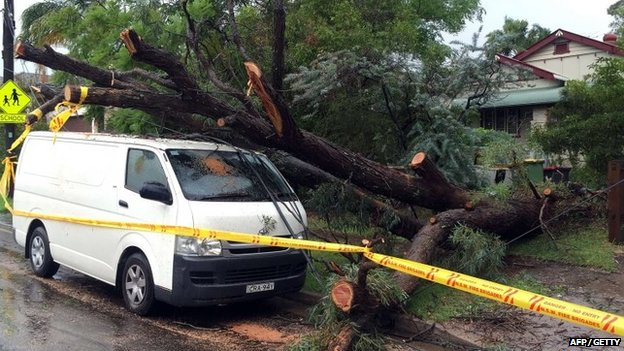An uprooted tree fall on a parked car in the residential area of the western Sydney following an over night strong storm on 21 April 2015.
