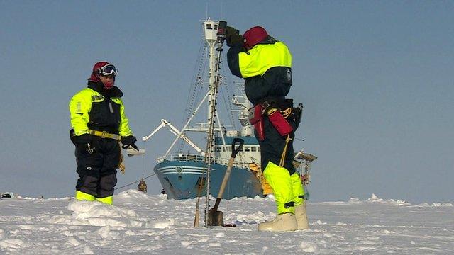 Arctic science