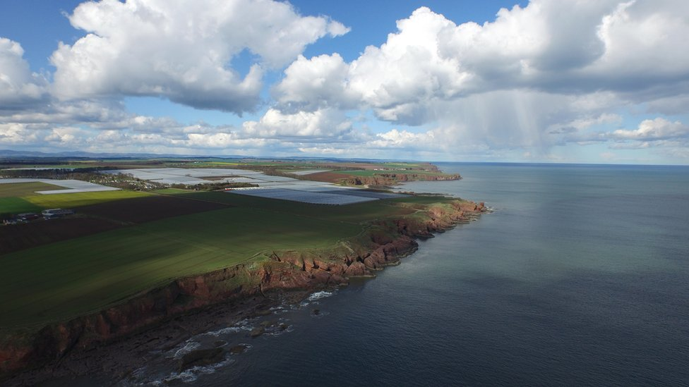 Seaton cliffs