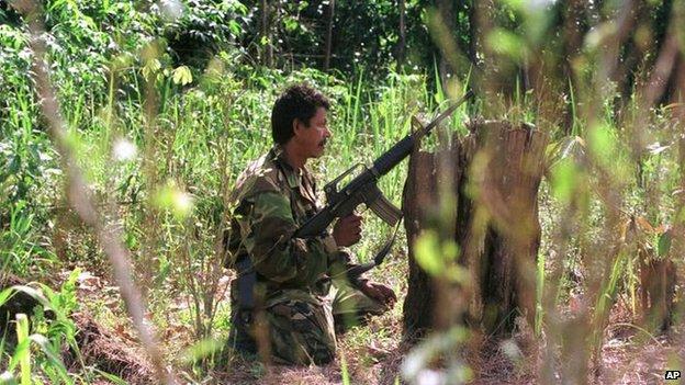 A Farc rebel in a coca field, 2000