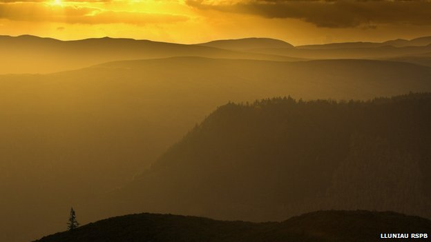 Mynyddoedd y Berwyn