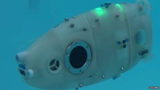 Underwater swarm robot