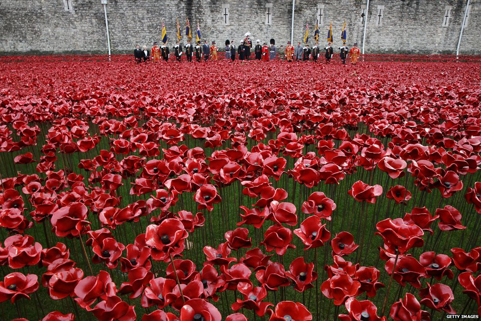 Field of Poppies at the Tower of London - WW1 anniversary